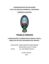 Inventariación y elaboración del manual para el manejo de Activos ...
