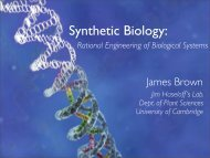 Synthetic Biology: - iGEM 2006