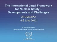 The International Legal Framework for Nuclear Safety ...
