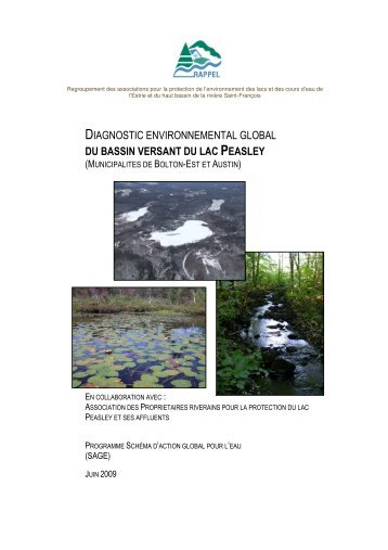 diagnostic environnemental global du bassin versant du lac peasley