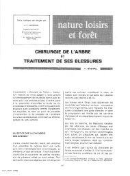 CHIRURGIE DE L'ARBRE TRAITEMENT DE SES BLESSURES