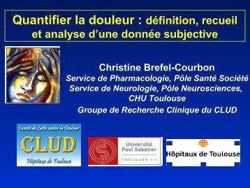 Multidimensional Pain Inventory (MPI) - Institut de Mathématiques ...
