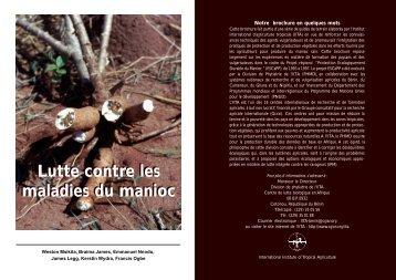 Lutte contre les maladies du manioc - IITA
