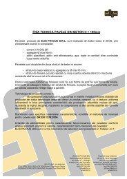 FISA TEHNICA PAVELE DIN BETON H = 100mm
