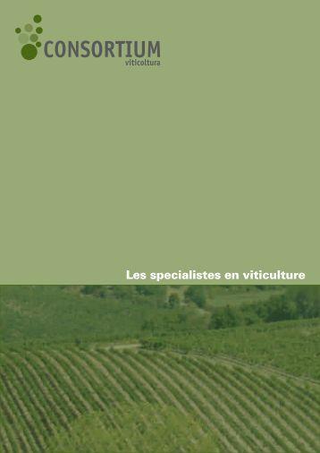 Les specialistes en viticulture - Consortium Spa