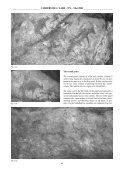 paiNtiNGs of i-N-seLouf (oued aridj) - Amis de l'Art rupestre saharien ... - Page 5
