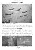 aperçu de L'art rupestre de L'araMat fezzâN Nord-occideNtaL (Libye). - Page 4