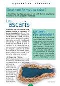LE GUIDE DU CHIOT - Chiens de France - Page 2