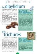 LE GUIDE DU CHIOT - Chiens de France - Page 3