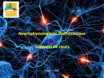 Supports de cours Neuro L1 - LAPPS
