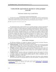 Carbon dioxide sequestration by injection to various geological ...