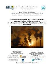 CE MDP : Conseil Exécutif du Mécanisme de Développement