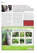 Les étapes d'une caro - Canne Progrès - Page 7