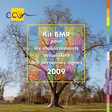 Kit BMR pour les établissements accueillant des ... - CClin Sud-Est