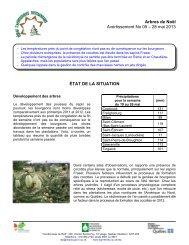 Arbres de Noël Avertissement No 05 – 28 mai 2013 ... - Agri-Réseau