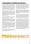 Poissons de bassin sains - sera GmbH - Page 5
