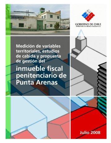 Informe Final Carcel Punta Arenas.pdf