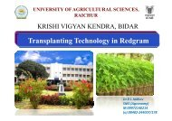 Click here to view the transplanting technology in Redgram