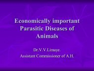 Economically Important Parasitic Diseases of animals (10794.94 KB)