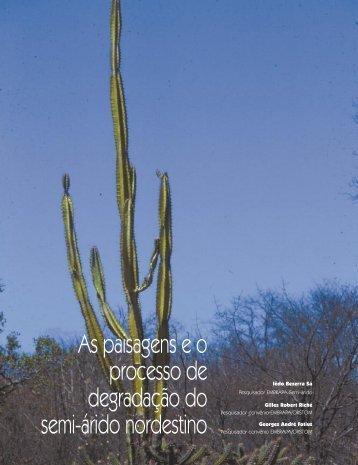 As paisagens e o processo de degradação do ... - Ainfo - Embrapa