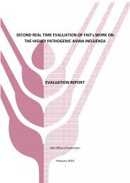 SECOND REAL TIME EVALUATION OF FAO's WORK ON THE ...