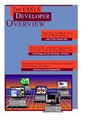 EXSYS Professional Developer Interface
