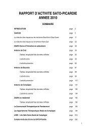 Rapport d'Activité 2010 - SATO Picardie