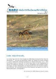 NABU-Naturschutznachrichten - Nr. 2 - Alt.nabu-sachsen.de