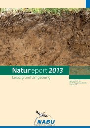 Download als PDF-Dokument - Alt.nabu-sachsen.de - NABU Sachsen