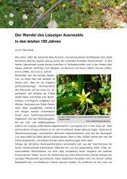 Der Wandel des Leipziger Auenwalds in den letzten 150 Jahren