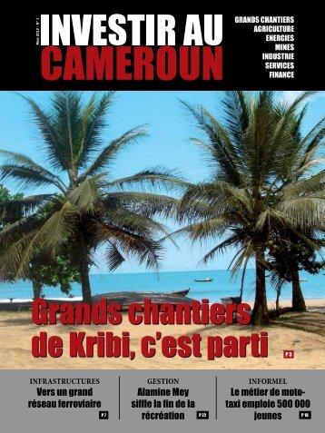 IC1.pdf - Investir au Cameroun