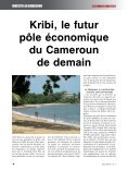 IC1.pdf - Investir au Cameroun - Page 4