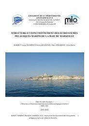 structure et fonctionnement des ecosystemes pelagiques marins de ...