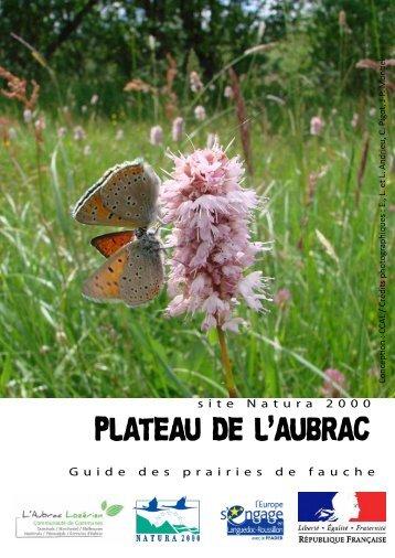 PLATEAU DE L'AUBRAC - Nasbinals
