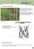 PLATEAU DE L'AUBRAC - Nasbinals - Page 5