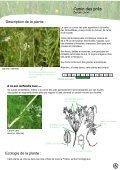 PLATEAU DE L'AUBRAC - Nasbinals - Page 7