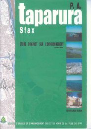 Etude d'Impact sur l'Environnement P.A. TAPARURA Janvier 2004 ...