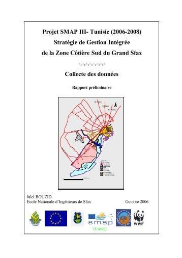 Collecte de données Rapport préliminaire - Medcities