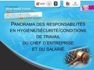 Panorama des responsabilités en Hygiène/sécurité/Conditions de ...