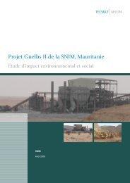Étude d'impact environnemental et social