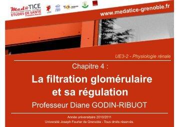 La filtration glomérulaire et sa régulation - Université Virtuelle Paris 5