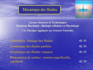 Mécanique des fluides - LEMM