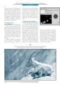 La chasse assistée par ordinateur - Université de Lausanne - Page 5