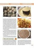 Parkia biglobosa Néré - Bioversity International - Page 3