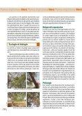 Parkia biglobosa Néré - Bioversity International - Page 4