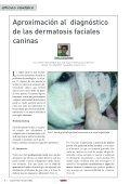 dermatosis faciales caninas - AMVAC - Page 3
