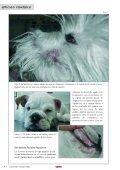 dermatosis faciales caninas - AMVAC - Page 7