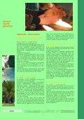 griechenland, kreta: off. angebot & seminare - andersreisen - kreativ! - Page 3