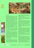 griechenland, kreta: off. angebot & seminare - andersreisen - kreativ! - Page 7