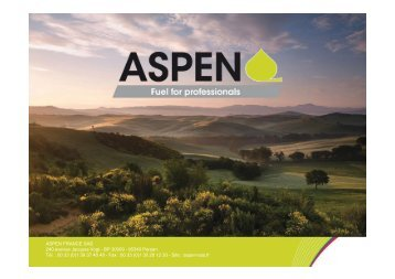 descriptif ASPEN - Delpeuch